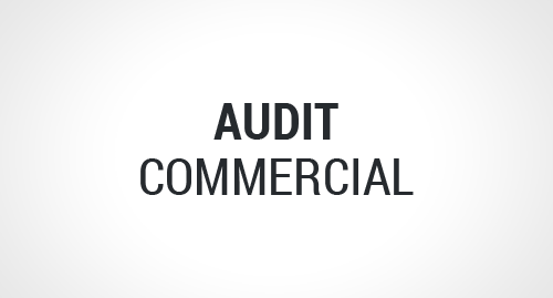 Audit commercial