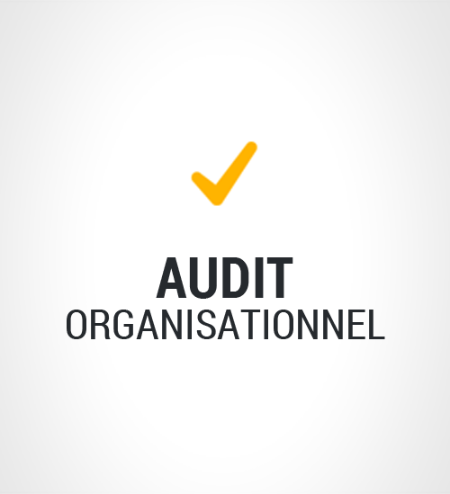 Audit Organisationnel