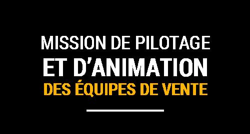 Mission de pilotage et d'animation eds équipes de vente